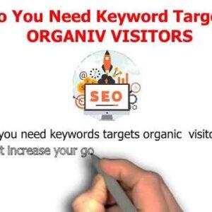 I will drive keywords targeted organic website traffic on fiverr